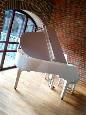 Piano at Denbies Wine Estate | Simon Grand